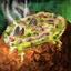 Bol de potage aux palourdes et à l'aneth