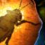 Grillon fossilisé dans l'ambrite