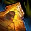 Cafard fossilisé dans l'ambrite