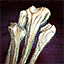 Don de huesos