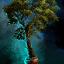 Baum im Topf