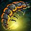 Fire Bug Larva