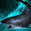 Haifigürchen