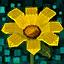 Super-Blume
