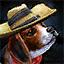 Mini Outlaw Puppy