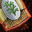 Estragon-Samen für den Garten