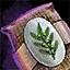 Morral de semillas de laurel