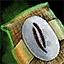 Morral de semillas de vainilla