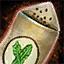 Graine de choux frisé potager