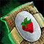 Morral de semillas de fresa