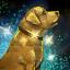Golden Dog Figurine