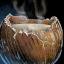 Bouteille de lait de coco